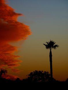 Stunning San Diego Sunday Sunset! Photo by Pat Brown, 12/27/15