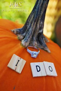 Fall engagement ideas
