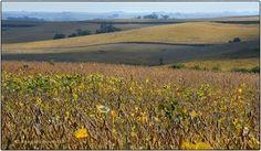 Early autumn in Iowa | krikitarts