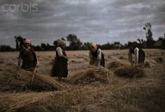 Poland --- Grain harvesters suffer hard work with looming economic crisis --- Image by © Hans Hildenbrand/National Geographic Society/Corbis National Geographic Images, National Geographic Society, Visit Poland, Image Photography, Royalty Free Images, Landscape Paintings, Life, Hard Work, Photographs