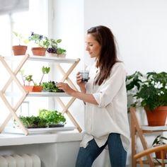Plant shelf by Kekkilä.