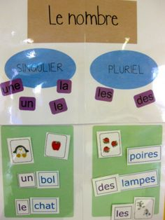 Singulier pluriel  - le nombre d'un nom. Rituel du matin en CP Education And Literacy, Special Education, French Grammar, French Resources, French Immersion, Teaching French, Edd, French Language, Educational Activities