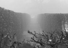 finienfotodesign - Fotokünstlerin Verena Maria - » verenas fotografische traumreisen - Schatten in der Nebelwelt #natur #nature #wasser #water # Entspannung #finienfotodesign #verenamaria #stille #silence #portfolio #fotografie #photography #art #nebel #fog #romance #romantik #kassel