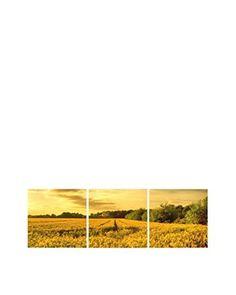 LO DEMODA Lienzo 3 Piezas Wheat Field