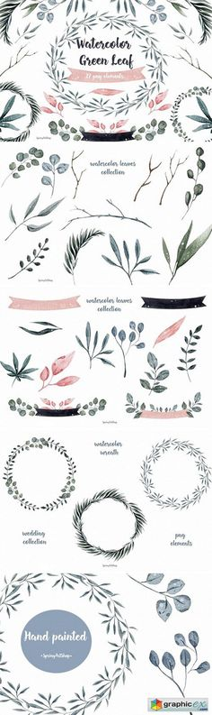 Watercolor Clipart Green Leaf  stock images