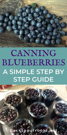 Canning Blueberries ~ Amazing Blueberry Goodness in a Jar Pressure Canning Recipes, Home Canning Recipes, Jam Recipes, Cooking Recipes, Blueberry Recipes For Canning, Canning Tips, Pressure Cooking, Canning Food Preservation, Preserving Food
