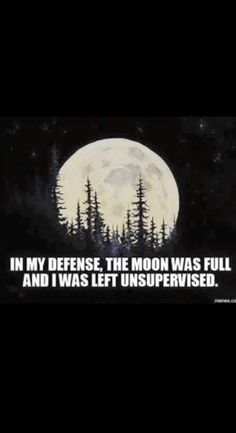 Bob Ross Painting - Rocky Mountain Moon by Chris Steele Work Quotes, Me Quotes, Funny Quotes, Full Moon Quotes, Stay Wild Moon Child, Bob Ross Paintings, Moon Dance, Sun Moon Stars, Moon Circle