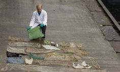 Beached Whale Found With 30 Plastic Bags Crammed In Its Belly | The Huffington Post