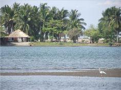 Boca del Cielo, tiene increibles paisajes, por su estero se encuentran manglares. - Chiapas, México