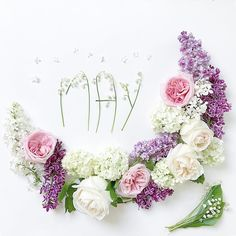 Welcome May 🌱🌸wish you a beautiful month full of roses and happiness 🍀 . Lavender Flowers, Pretty Flowers, Welcome May, Welcome Pictures, Month Flowers, Flower Wall Decor, Months In A Year, Christmas Pictures, Holidays And Events
