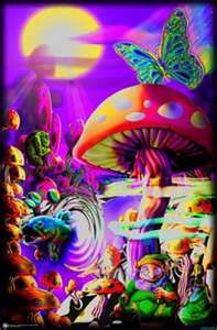Mushrooms- I had many posters just like this up in my room with a Black Light when I was a teen!