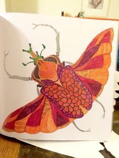 Millie Marotta Wild Savannah Curious CreaturesAdult ColoringColoring BooksPalletsSavannahAdult