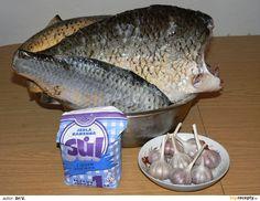 Očištěné ryby naporcujeme a zvážíme. Na 5 kg ryb použijeme 150 g soli a asi 4 menší hlavičky česneku. Oloupaný česnek rozetřeme se solí na pastu,... Thing 1, Fish, Meat, Author, Pisces