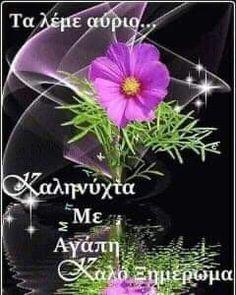 Beautiful Pink Roses, Good Night Wishes, Good Morning, Happy Birthday, Anastasia, Decor, Good Evening Wishes, Buen Dia, Happy Brithday