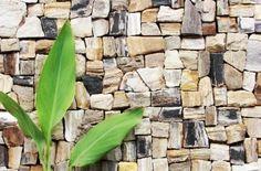 木の化石/R不動産