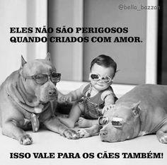 Lu Amorim - Google+►https://plus.google.com/u/0/collections ↻#exclusiv@luamorim↺ ''Eles não são perigosos quando criados com amor. Isso vale para os cães também!'' #justiça #dignidade #respeito aos #animais  Maus-tratos aos animais é #CRIME  #DENUNCIE