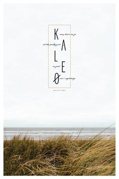 Kaleo Music Poster - An awesome Icelantic band similar to Bon Iver and Band of…