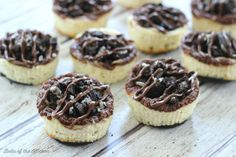 Mini Nutella Swirl Oreo Cheesecakes - Belle of the Kitchen Oreo Cheesecake, Cheesecake Recipes, Easy Desserts, Dessert Recipes, Nutella Pie, Oreo Crust, Incredible Recipes, Baking Cups, Oreo Cookies