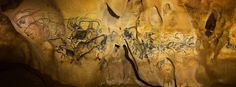 """The Horse Panel in Chauvet Cave. Discovered in 1994, the Horse Panel and  the other stunning drawings provide """"an extraordinary testimony to man's  first steps in the adventure of art"""". 35 000 years old"""