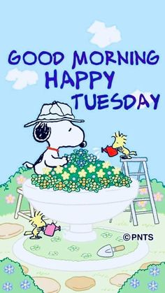 Snoopy and Woodstock friendship == Good morning Happy Tuesday Happy Tuesday Morning, Good Morning Greetings, Good Morning Good Night, Good Morning Wishes, Night Wishes, Happy Thursday, Tuesday Quotes Funny, Tuesday Humor, Saturday Quotes