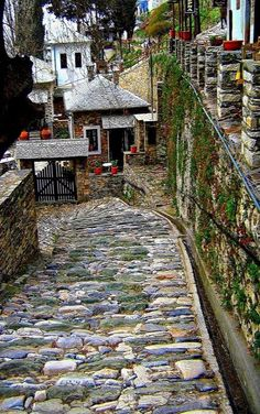 Street in Makrinitsa (Pilio Magnesia),Thessaly, Central Greece // by aggeliki.k on Panoramio