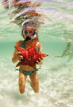 Beach Life ~ Snorkeling for Starfish Summer Sun, Summer Of Love, Summer Days, Summer Vibes, Summer Beach, Beach Kids, Summer Breeze, Snorkeling, Shotting Photo