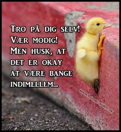Tror jeg er allermest bange for hvad min usikkerhed kan gøre med mig! Cute Quotes, Best Quotes, Funny Quotes, Word Pictures, Funny Pictures, Cool Words, Wise Words, English Quotes, Tro