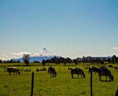 #Travel #Chile #Roadtrip