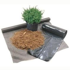 What's the best weed barrier?  Weed barrier options    Weed barrier options    Use an organic mulch or high-quality landscape fabric. Don't use black plastic.