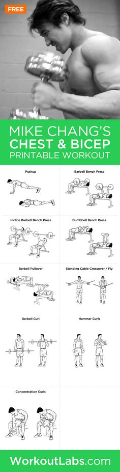 Mike Chang's Actual Chest And Bicep Workout – Mike Chang's actual chest and bicep workout featuring the exercises you will need to build the ripped chest and biceps that you've always wanted.