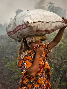 Palm Oil Is In Everything -- And It's Destroying Southeast Asia's Forests. Not in everything since our soaps are palm oil free! http://www.theonlinemedina.com/collections/frontpage