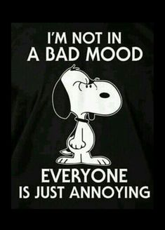 Peanut Snoopy T shirt – I wish I could do it sometimes. Peanuts Quotes, Snoopy Quotes, Me Quotes, Funny Quotes, Funny Memes, Hilarious, Qoutes, Snoopy Love, Charlie Brown And Snoopy