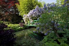 Monet's Garden in Giverny, France - The Pond (I) by Rosarian49, via Flickr