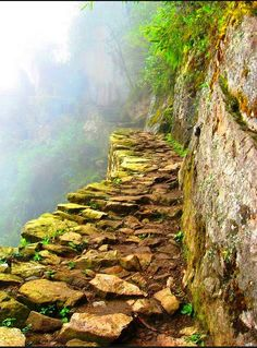 The eternal Inca Trail, a testament to Incan architecture and engineering! #Travel #Peru #Architecture