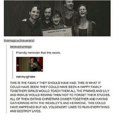 In a side note, without Voldemort Hermione wouldn't have been friends with Harry and Ron like they actually were since the troll was let in by the snake-man