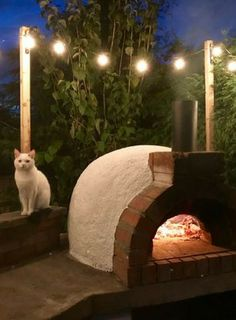 New Ideas Diy Outdoor Grill Area Pizza Ovens – backyard grill Outdoor Grill Area, Pizza Oven Outdoor, Bbq Area, Outdoor Cooking, Brick Oven Pizza, Wood Fired Pizza, Fire Pizza, Pizza Pizza, Brick Bbq