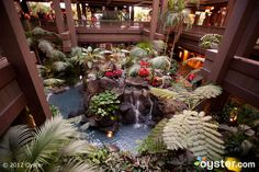Lobby of the Disney Polynesian Resort. We had the most incredible time at that resort on New Year's Eve. It was amazing! Orlando Resorts, Hotels And Resorts, Polynesian Village Resort, Florida Holiday, Disney World Pictures, Tiki Lounge, Disney Magic, Walt Disney, Disney Trips