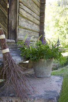 Bloemen in een emmer