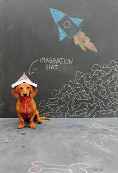 Ammo the Dachshund - Imagination Hat - Chalkboard Art