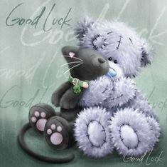 Tatty teddy says good luck to kitty