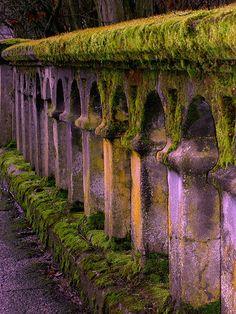 Mossy arched purple bridge