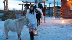 - Written In Stone Amy and Ty's wedding Heartland Season 8, Heartland Georgie, Heartland Quotes, Amy And Ty Heartland, Heartland Ranch, Heartland Tv Show, Best Tv Shows, Favorite Tv Shows, Ty E Amy