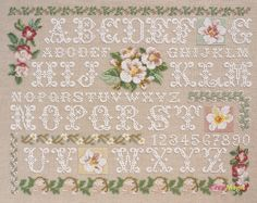 embroidery cross stitch sampler - Peonies - DMC