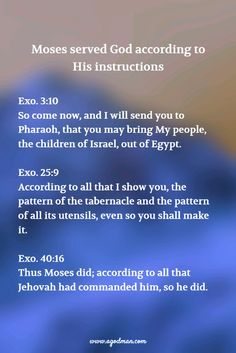Moses served God according to His instructions Exo. 3:10 So come now, and I will send you to Pharaoh, that you may bring My people, the children of Israel, out of Egypt. 25:9 According to all that I show you, the pattern of the tabernacle and the pattern of all its utensils, even so you shall make it. 40:16 Thus Moses did; according to all that Jehovah had commanded him, so he did.