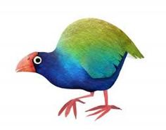 This endangered and flightless bird is found only in New Zealand. … Books, Art, Events, and more from NY based Artist / Illustrator Brendan Wenzel. Animal Fact File, Animal Facts For Kids, Bird Drawings, Animal Drawings, Drawing Animals, Storyboard, 6th Grade Art, Bird Artwork, Bird Illustration