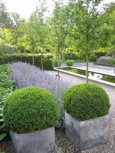 Layers of planting. Large pots planted with evergreen, herbaceous planted in mass, small trees.