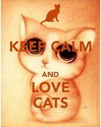 Výsledok vyhľadávania obrázkov pre dopyt keep calm