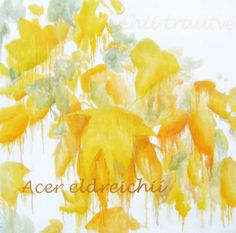 Obra artística de Atelier Angels Romero Lázaro como uno de nuestros pintores contemporaneos