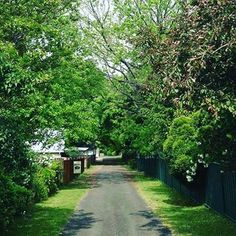 Another beautiful Glen Innes Spring Day. Photo by @homelealass #gleninnes #gleninnesnsw #gleninneshighlands #visitnsw #newsouthwales #visitaustralia #seeaustralia #australia #iloveaustralia #travelaustralia #travelphotography #travel #exploreaustralia #australiancountry #countrytown #countryside #countrybeauty #instacountry #instatravel #travelgram #photography #explore #spring #springcolours