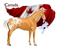 Horsetalia:  Canada by Moon-illusion